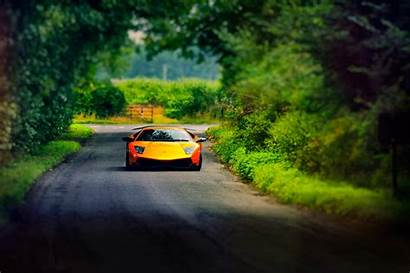 Lamborghini Road Cars Murcielago Yellow Desktop Orange