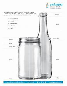 Anatomy Of A Bottle  The Basics