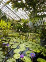 Botanischer Garten Jena Preise botanischer garten jena friedrich schiller universit 228 t jena