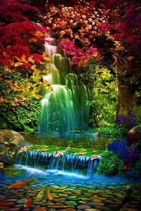 Water, Garden