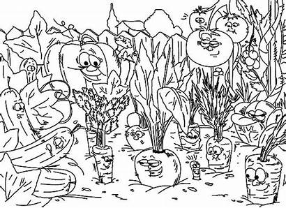 Coloring Garden Pages Vegetables Vegetable Sunny Template