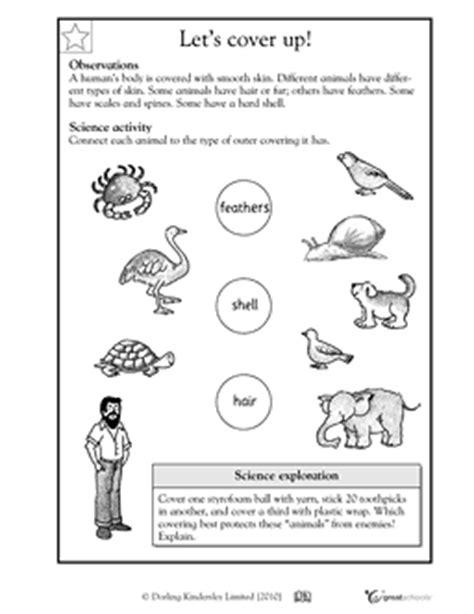 skin feathers and shells animal characteristics