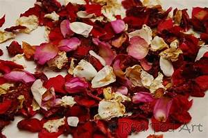 How To Rose Petal Wedding Confetti Wedding Rose