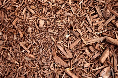picture brown wood chipboard mulch texture
