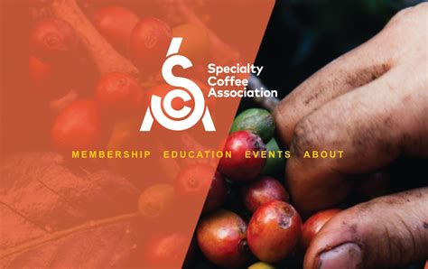 Finally, a Name for the SCAA/SCAE: Specialty Coffee Association   Daily Coffee News by Roast