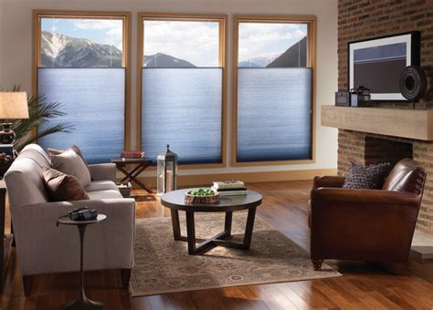 blue brown living room  privacy  duofold shades