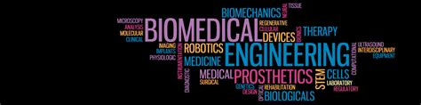 floorplan for my why do biomedical engineering myucd
