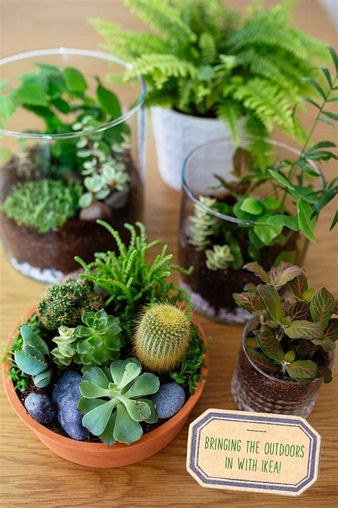 DIY Craft Ideas for Outdoors