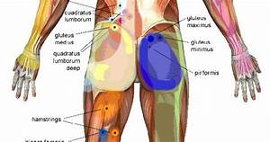 Trigger Points Are Tiny Knots That Develop In A Muscle
