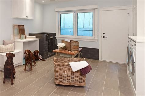 best type of flooring for dogs choosing the best type of flooring for dogs and their owners