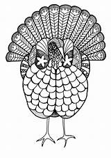 Coloring Adult Turkey Thanksgiving Fall Colorful Animal Printable Crafts Colouring Craft Favecrafts sketch template