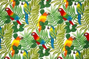 Parrot fabric tropical jungle bright, Sample - Tropical