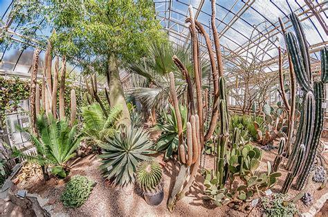 Botanischer Garten Heidelberg Hochzeit botanischer garten heidelberg hochzeit