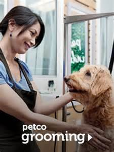 petco cat grooming petco grooming