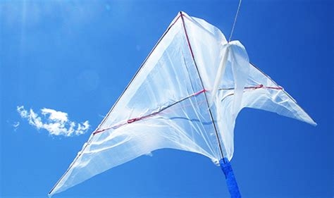 kite  physics science friday