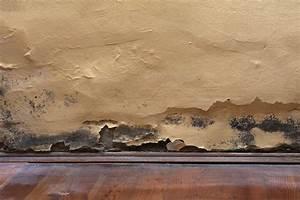 Feuchtigkeit In Der Wand : mietminderung nasse wand in der wohnung feuchtigkeit ~ Sanjose-hotels-ca.com Haus und Dekorationen