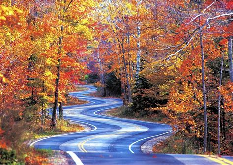Great Wisconsin Drives For Fall Leaves  Chicago Tribune