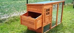 meilleur poulailler moyen 4 poules meilleur poulailler With modele plan de maison 4 poulailler norway la ferme de beaumont poulaillers