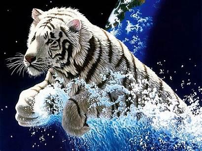 Tiger 3d Wallpapers Desktop Backgrounds Background Cool