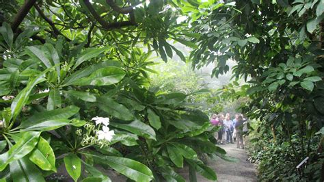 Botanischer Garten Bayreuth Anfahrt by Gartenimpressionen Der 214 Bg Im Jahresverlauf