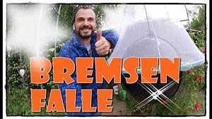 Bremsenentlüfter Selber Bauen : bremsenfalle selbst bauen pferde hoschi youtube ~ Watch28wear.com Haus und Dekorationen