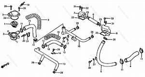 Honda Motorcycle 1985 Oem Parts Diagram For Water Pipe    Thermostat