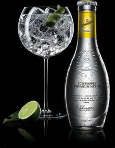 Cocktail Nouvel An : 5 variantes du cocktail gin tonic recettes de cocktails ~ Nature-et-papiers.com Idées de Décoration