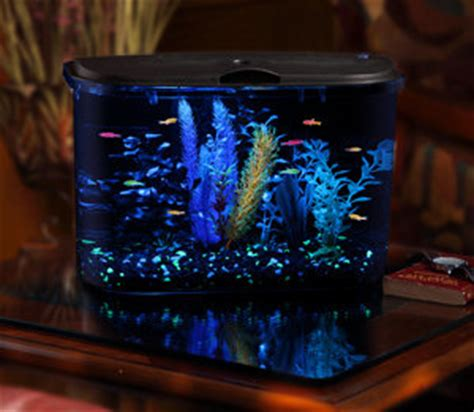 fabrication re led aquarium api panaview aquarium kit with led lighting and power filter 5 gallon fish tank