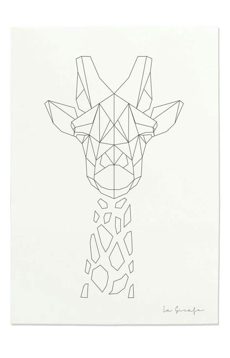 pin  emily molczyk  terrarium   dessin