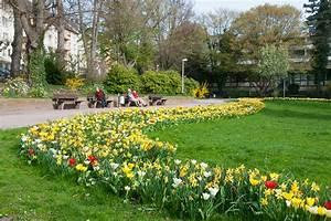 Blumenzwiebeln Pflanzen Frühjahr : blumenzwiebeln maschinelles pflanzen ~ A.2002-acura-tl-radio.info Haus und Dekorationen