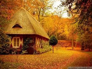 Tiny, House, Wallpaper