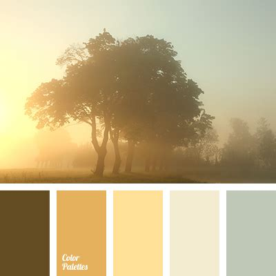 colours of morning color palette ideas