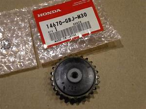 25 T Sprocket Cam Chain Guide