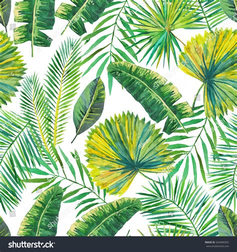 Green Palm Leaves On White Background Stock Illustration