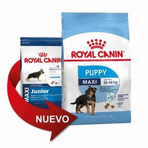 Royal Canin Maxi Junior : royal canin maxi puppy tiendanimal ~ Buech-reservation.com Haus und Dekorationen