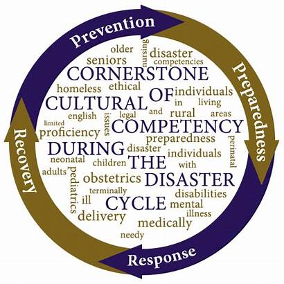 Disaster Nursing Cultural C3dc During Planning Competency