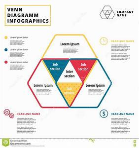 Venn Diagram Vector Circles  Infographics Template Design