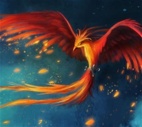 anime phoenix bird desktop wallpaper