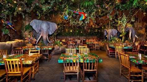 rainforest cafe downtown disney district