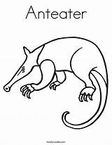 Anteater Coloring Ant Outline Drawing Animal Twisty Noodle Starts Twistynoodle Tracing Built California Usa sketch template