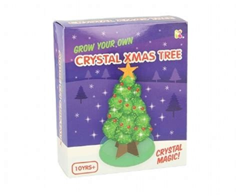 christmas tree growing kit grow your own tree kit supplied science age 10 ebay