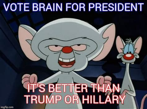 Pinky Meme - pinky and the brain imgflip