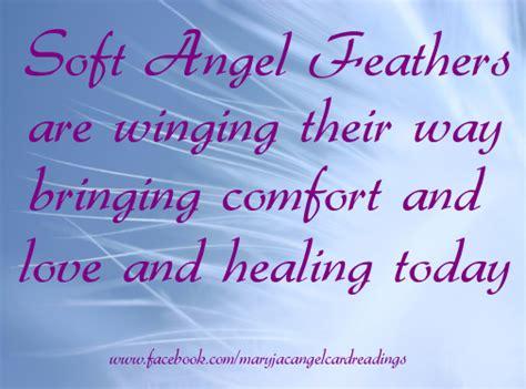 soft angel feathers  winging   bringing comfort