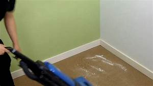can you get bed bugs from carpet cleaning carpet vidalondon With bed bug cleaning