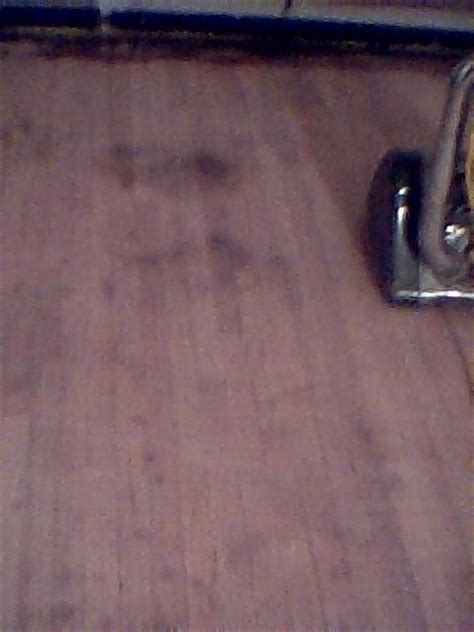 wood floor stain removal removing stains from wood floors