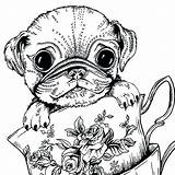 Pug Coloring Dog Adults Printable Colouring Dogs Adult Animal Puppy Sheets Bestcoloringpagesforkids Teacup Animals Boys Getdrawings Whitesbelfast Puppies Pusat Hobi sketch template