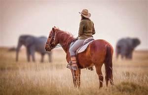 Kalahari Ride Green Season 3 Nights • Kalahari Horse ...