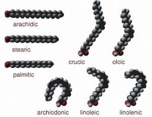 Organic Compounds  U2039 Opencurriculum