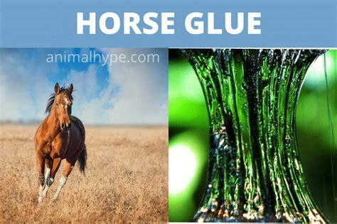 glue horse