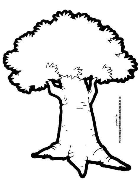 terbaru 35 gambar sketsa pohon beringin